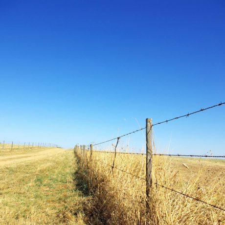 Feature pic 1-Agriculture-Western-Fence